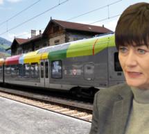 Die Zug-Rowdys
