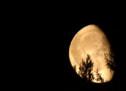 Was ist dran am Mondkalender?