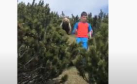 Junge trifft Bär