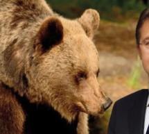 """""""Der Bär ist nicht die große Bedrohung"""""""