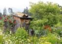 von gärten, pflanzen und menschen