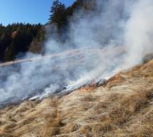 Flächenbrand beim Nuflatscherhof