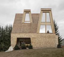 Ein Haus aus dem Windwurf  Vaja