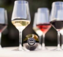 Aufschwung im Weinsektor