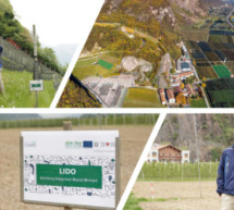 Das Projekt LIDO