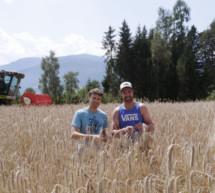 Die Regiokorn-Bauern
