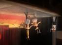 Das Steinegg-Live-Programm